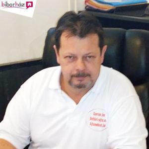 Balogh Zoltán Üzletágvezető